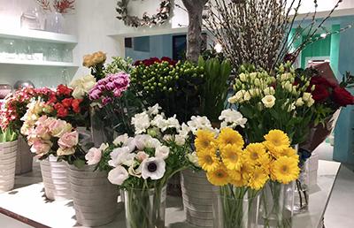 marilù storie di fiori