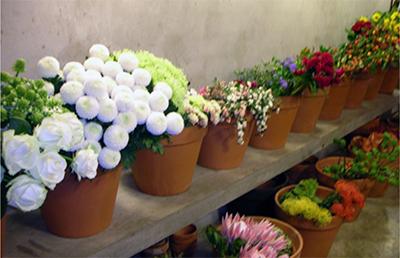 fiori bergamo
