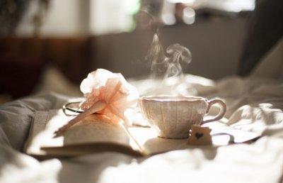 Tea-Brasilian-Detox-by-arte-del-ricevere