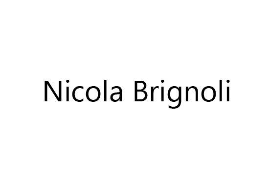 logoNicolaBrignoli